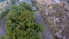 Felling tropical jungle River Delta. Africa. Aerial footage Stock Footage