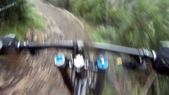 POV of teenage boy mountain biking in a forest. Stock Footage