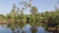 Calm Sweetwater pool in Nitmiluk NP Stock Footage