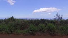 Dirt Road Jib Up Grassy Field and Ocean. Ulupalakua Aerial 04 Stock Footage