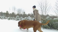 Woman drags her christmas tree in snowy field with her mastiff dog 4k Stock Footage