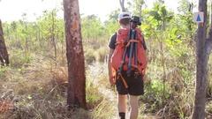 Male hiker walking into sunshine Stock Footage