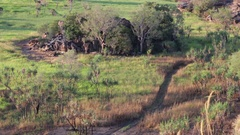 Path leading through Australian grass landscape Stock Footage