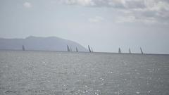 Italian sailboats and windsurfers Stock Footage