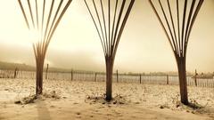 Pan shot of winter landscape, Tipi Stock Footage