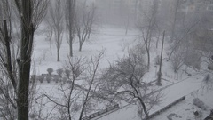 Winter snow blizzard town trees fast time lapse. Cold icy weather and season Stock Footage