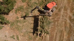 Forestry silviculture - forwarder collects sawn tops after cut-to-length lo.. Stock Footage