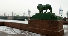 Sculpture of a lion, Saint Petersburg, Russia Stock Footage
