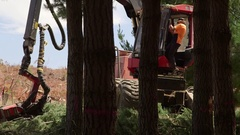 Logging contractor starts up a timber harvester Stock Footage