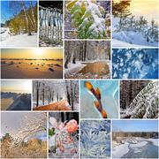 Winter in nature, Siberia, Novosibirsk oblast, Russia Stock Photos