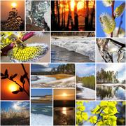 Spring in nature, Siberia, Novosibirsk oblast, Russia Stock Photos