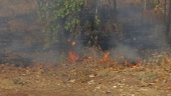 Controlled bush fire burns away grass Stock Footage