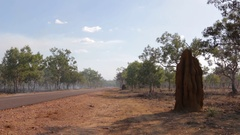 Huge termite hill next to road amid bush fire smoke Stock Footage