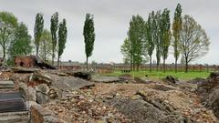 4K Birkenau Crematorium Ruins, Concentration Camp, Holocaust Death Memorial Stock Footage
