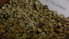 Green unroasted coffee beans Stock Footage