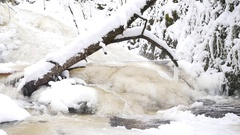 Fallen tree in frozen mountain stream. Snowy and icy stones in chilly water Stock Footage