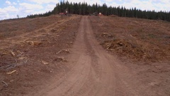 Clearcutting or clearfelling of pine forest trees, aerial track past stumps Stock Footage
