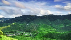4K Time lapse of fluffy clouds and tea plantation with brush strokes effect Stock Footage