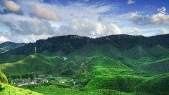 4K Time lapse of fluffy clouds and tea plantation at Cameron Highland Malaysia Stock Footage