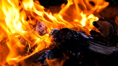 Burning fire and bright coals. Stock Footage