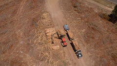Loading cut-to-length timber onto a logging truck, aerial track over Stock Footage