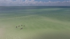 The beach of Zanzibar island Stock Footage