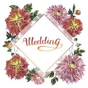 Wildflower aster flower frame in a watercolor style isolated Stock Illustration