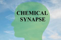 Chemical Synapse concept Stock Illustration
