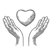 Heart in open female human palms. Vector black vintage engrav Stock Illustration