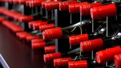 Racks of wine bottles closeup Stock Footage