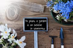 Sunny Spring Flowers, Sign, Quote Plant Garden Believe In Tomorrow Stock Photos