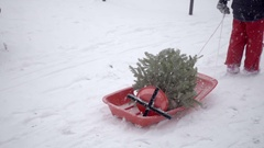 Boy dragging mini Christmas tree in sled in snow storm snowing in winter NYC Stock Footage