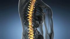Backbone. backache. science anatomy scan of human spine bones glowing Stock Footage