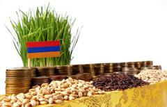 Armenia flag waving with stack of money coins and piles of wheat and rice see Stock Photos