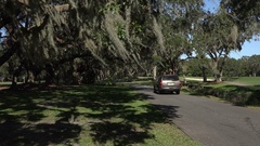 Zoom in, car drives under live oak trees, Georgia, USA Stock Footage