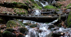 A Waterfall in the Mountains Autumn Forest With Yellow Foliage and Mossy Rocks Stock Footage