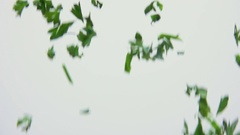 Green parsley is flying Stock Footage