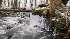 Shinning icicles. Frozen drops above winter stream created beautiful icicles. Stock Footage