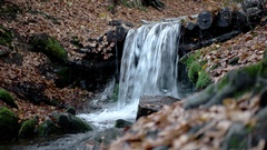 A Small Waterfall in the Mountains Autumn Forest With Yellow Foliage and Mossy Stock Footage