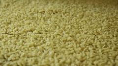 Macaroni production Stock Footage