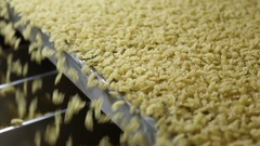 Industrial equipment for manufacture of macaroni Stock Footage
