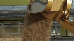 Front loader pouring wood chips from its bucket into a pile Stock Footage