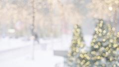 Smiling Woman Selfies in Snowy Zuccotti Park Winter Stock Footage