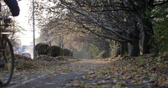 Cyclist is Riding a Bicycle Away on an Autumn Park Alley With Yellow Leaves Stock Footage