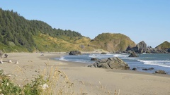 Lone Ranch Beach, Brookings, Oregon (pan) Stock Footage