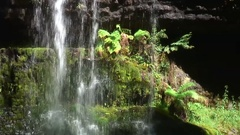 Waterfall in Tasmanias temperate rainforest on a sunny day Stock Footage