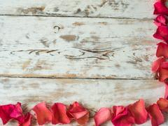 Blank valentine card, scattered rose petals top view. Space for text Stock Photos