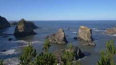 Spruce Island, Southern Oregon coast (pan) Stock Footage
