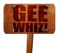Gee whiz, 3D rendering, text on wooden sign Piirros