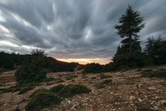 Storm clouds in a bleak landscape, Ifrane, Morocco Stock Photos